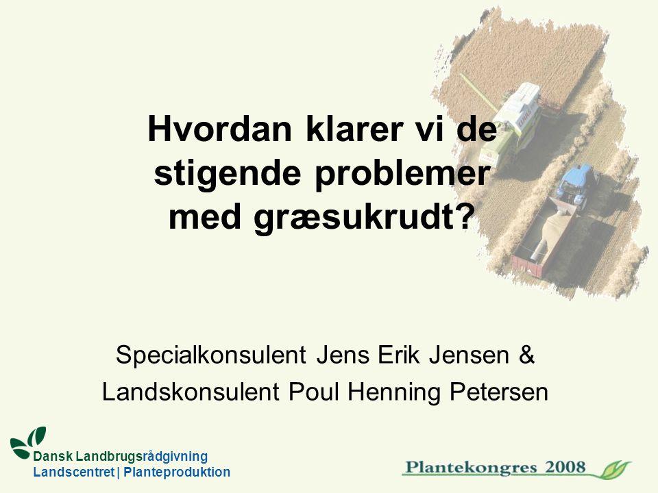 Dansk Landbrugsrådgivning Landscentret | Planteproduktion Hvordan klarer vi de stigende problemer med græsukrudt.