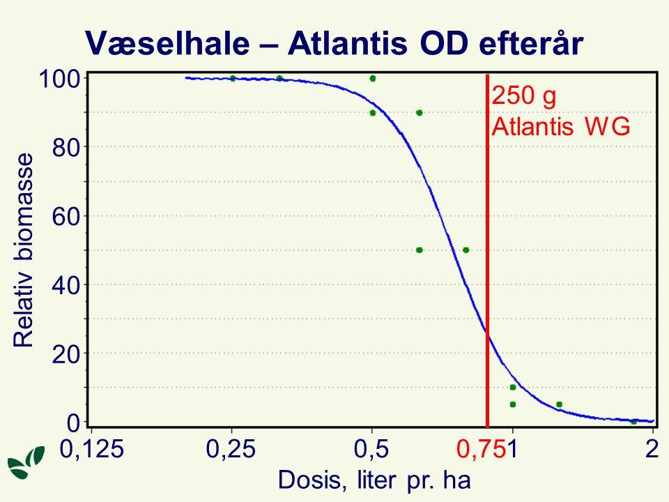 Væselhale – Atlantis OD efterår Dosis, liter pr.