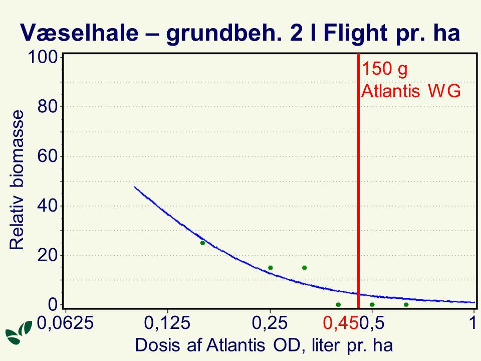 Væselhale – grundbeh. 2 l Flight pr. ha Dosis af Atlantis OD, liter pr.