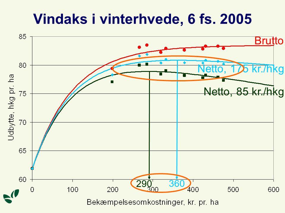 Vindaks i vinterhvede, 6 fs. 2005 Brutto Netto, 85 kr./hkg Netto, 175 kr./hkg 290 360