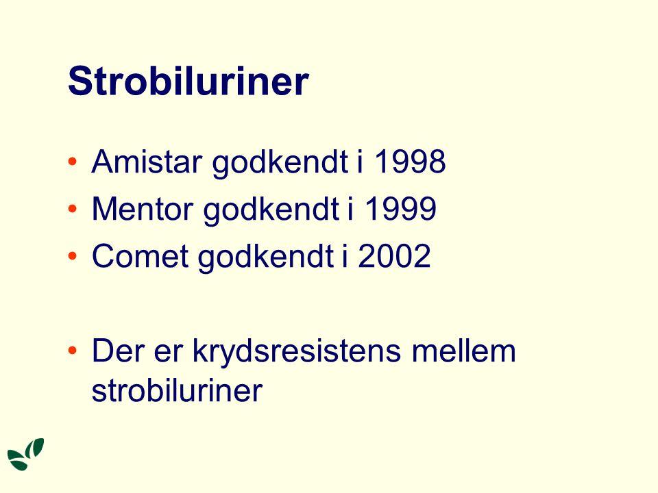 Strobiluriner Amistar godkendt i 1998 Mentor godkendt i 1999 Comet godkendt i 2002 Der er krydsresistens mellem strobiluriner