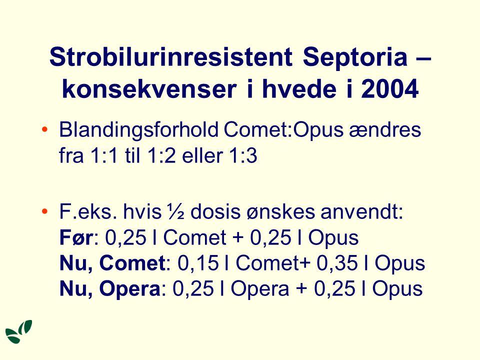 Strobilurinresistent Septoria – konsekvenser i hvede i 2004 Blandingsforhold Comet:Opus ændres fra 1:1 til 1:2 eller 1:3 F.eks.