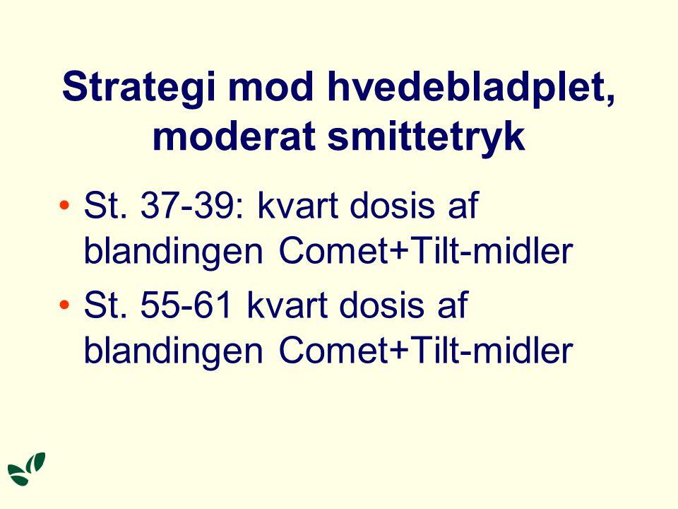 Strategi mod hvedebladplet, moderat smittetryk St.