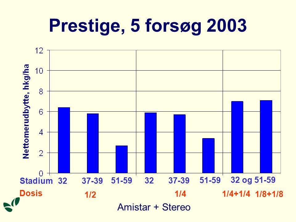 Prestige, 5 forsøg 2003 Stadium Dosis 32 1/2 1/4 1/4+1/4 1/8+1/8 37-39 51-59 32 37-39 51-59 32 og 51-59 Amistar + Stereo