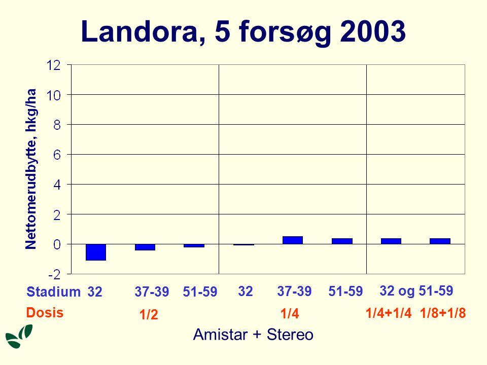 Landora, 5 forsøg 2003 Stadium Dosis 32 1/2 1/4 1/4+1/4 1/8+1/8 37-39 51-59 32 37-39 51-59 32 og 51-59 Amistar + Stereo