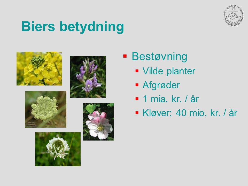  Bestøvning  Vilde planter  Afgrøder  1 mia. kr.