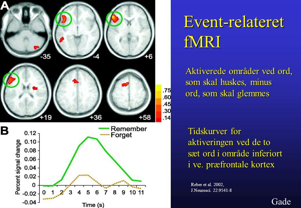 Gade Event-relateretfMRI Reber et al. 2002, J.Neurosci.