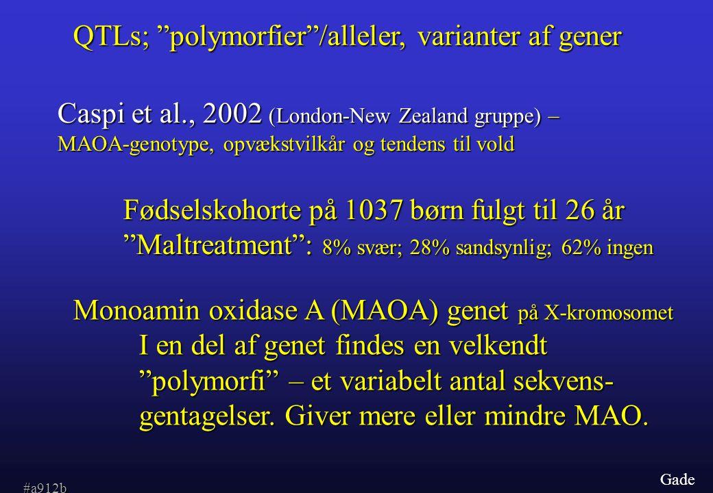 Gade QTLs; polymorfier /alleler, varianter af gener Caspi et al., 2002 (London-New Zealand gruppe) – MAOA-genotype, opvækstvilkår og tendens til vold Fødselskohorte på 1037 børn fulgt til 26 år Maltreatment : 8% svær; 28% sandsynlig; 62% ingen Monoamin oxidase A (MAOA) genet på X-kromosomet I en del af genet findes en velkendt polymorfi – et variabelt antal sekvens- gentagelser.