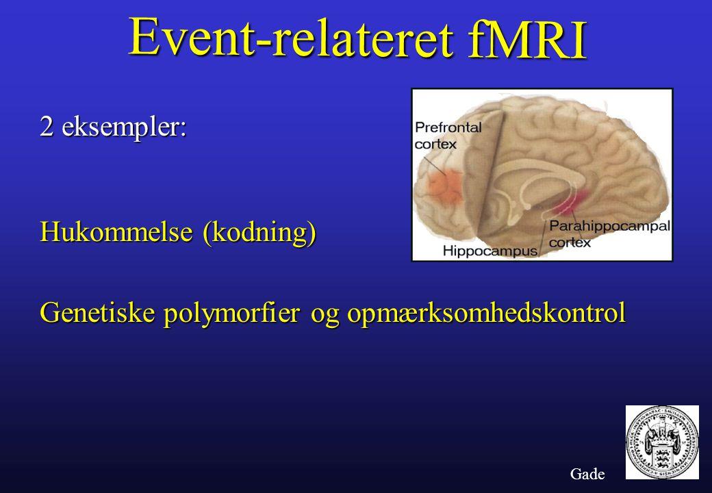 Gade Event-relateret fMRI 2 eksempler: Hukommelse (kodning) Genetiske polymorfier og opmærksomhedskontrol