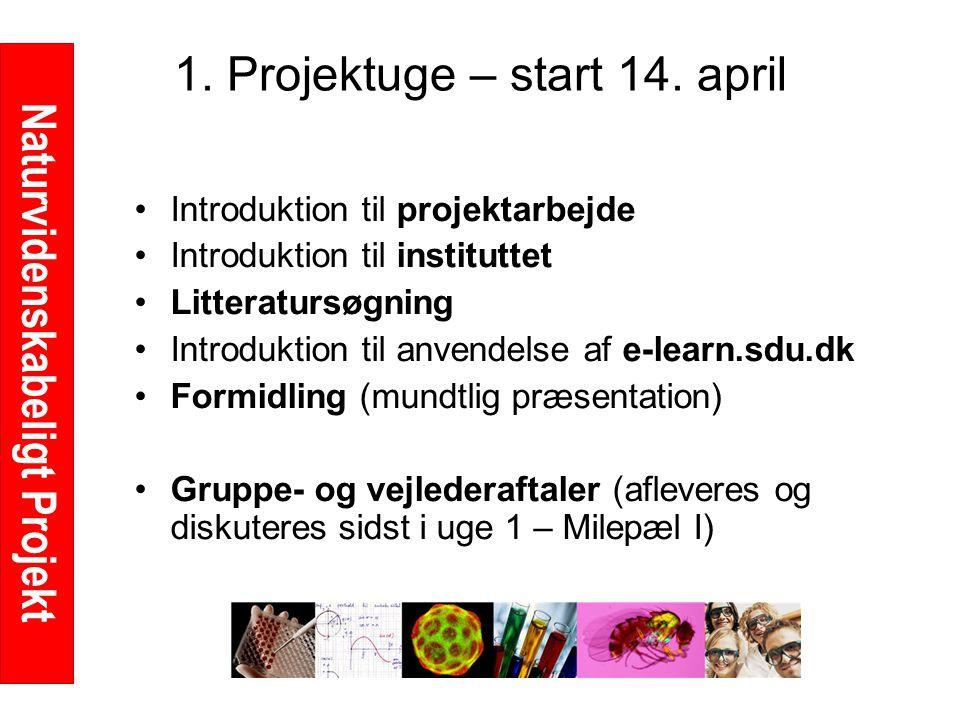 Naturvidenskabeligt Projekt 1. Projektuge – start 14.