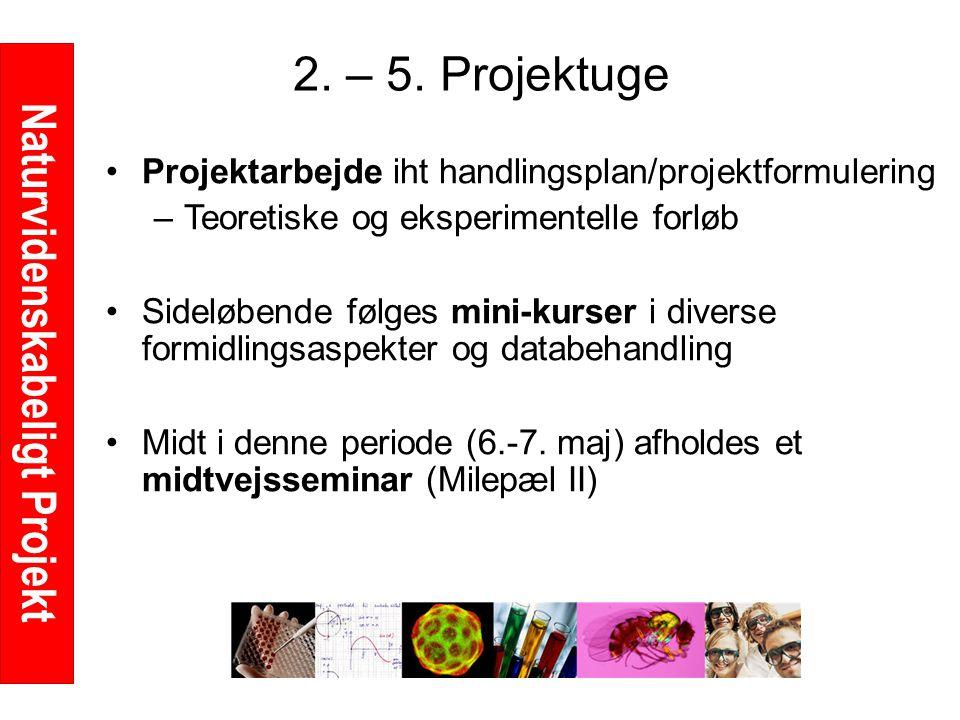 Naturvidenskabeligt Projekt 2. – 5.