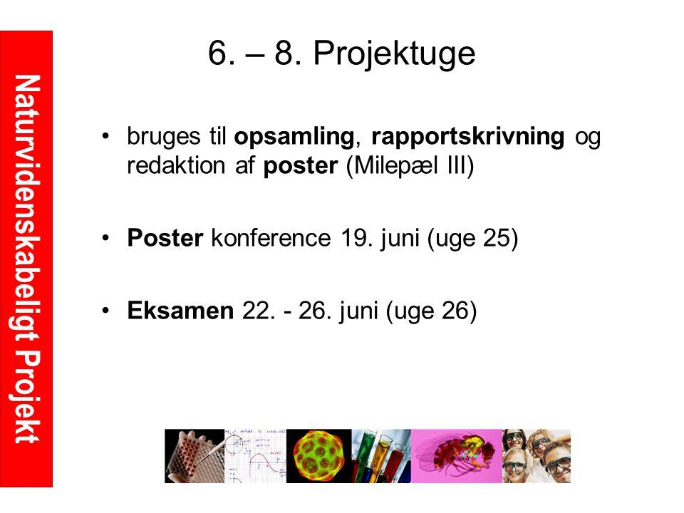 Naturvidenskabeligt Projekt 6. – 8.