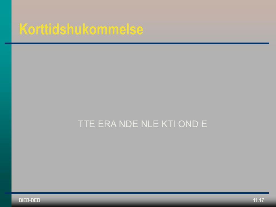 DIEB-DEB11.17 Korttidshukommelse TTE ERA NDE NLE KTI OND E