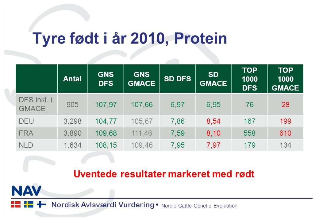 Nordisk Avlsværdi Vurdering Nordic Cattle Genetic Evaluation Tyre født i år 2010, Protein Antal GNS DFS GNS GMACE SD DFS SD GMACE TOP 1000 DFS TOP 1000 GMACE DFS inkl.