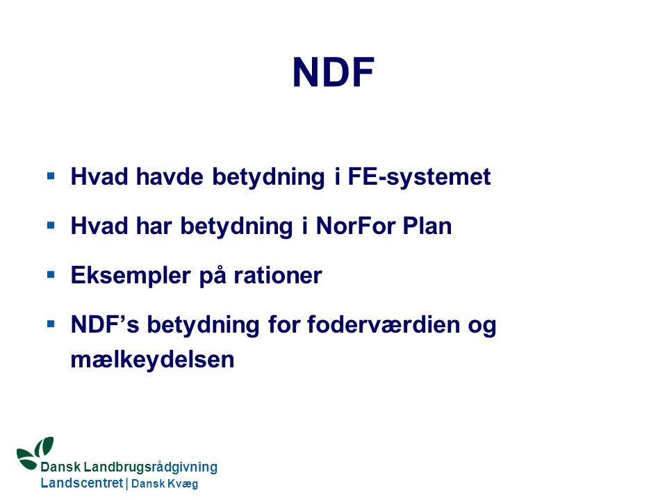 Dansk Landbrugsrådgivning Landscentret | Dansk Kvæg S:\SUNDFODE\OEA\Fodringsdag 2004\Ole Aaes.ppt NDF  Hvad havde betydning i FE-systemet  Hvad har betydning i NorFor Plan  Eksempler på rationer  NDF's betydning for foderværdien og mælkeydelsen