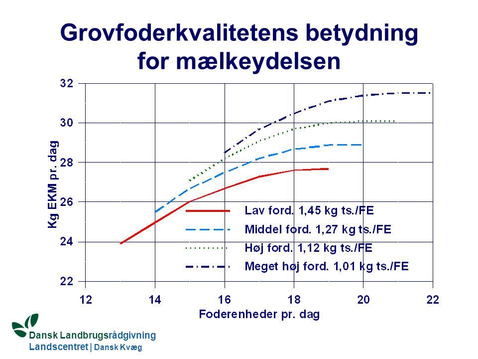 Dansk Landbrugsrådgivning Landscentret | Dansk Kvæg S:\SUNDFODE\OEA\Fodringsdag 2004\Ole Aaes.ppt Grovfoderkvalitetens betydning for mælkeydelsen