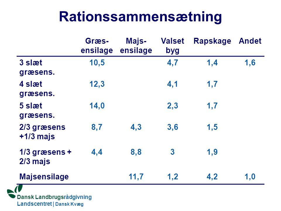 Dansk Landbrugsrådgivning Landscentret | Dansk Kvæg S:\SUNDFODE\OEA\Fodringsdag 2004\Ole Aaes.ppt Rationssammensætning Græs- ensilage Majs- ensilage Valset byg RapskageAndet 3 slæt græsens.