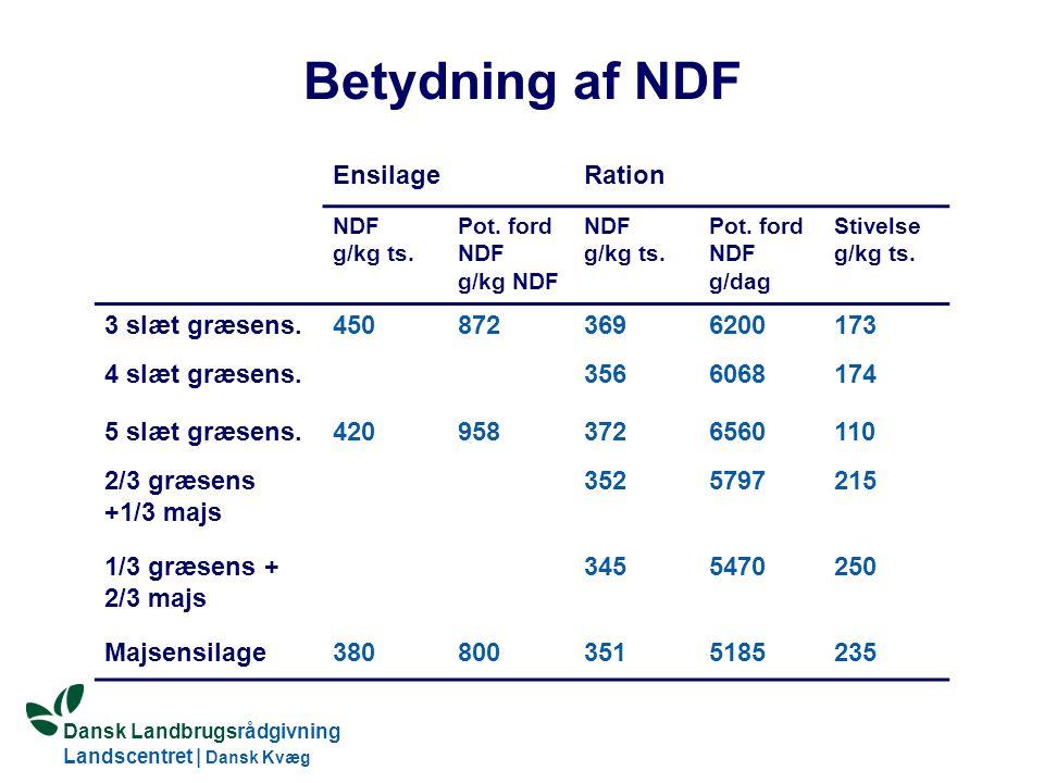 Dansk Landbrugsrådgivning Landscentret | Dansk Kvæg S:\SUNDFODE\OEA\Fodringsdag 2004\Ole Aaes.ppt Betydning af NDF EnsilageRation NDF g/kg ts.