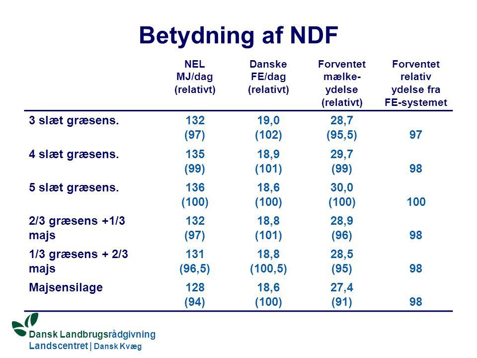 Dansk Landbrugsrådgivning Landscentret | Dansk Kvæg S:\SUNDFODE\OEA\Fodringsdag 2004\Ole Aaes.ppt Betydning af NDF NEL MJ/dag (relativt) Danske FE/dag (relativt) Forventet mælke- ydelse (relativt) Forventet relativ ydelse fra FE-systemet 3 slæt græsens.132 (97) 19,0 (102) 28,7 (95,5)97 4 slæt græsens.135 (99) 18,9 (101) 29,7 (99)98 5 slæt græsens.136 (100) 18,6 (100) 30,0 (100)100 2/3 græsens +1/3 majs 132 (97) 18,8 (101) 28,9 (96)98 1/3 græsens + 2/3 majs 131 (96,5) 18,8 (100,5) 28,5 (95)98 Majsensilage128 (94) 18,6 (100) 27,4 (91)98