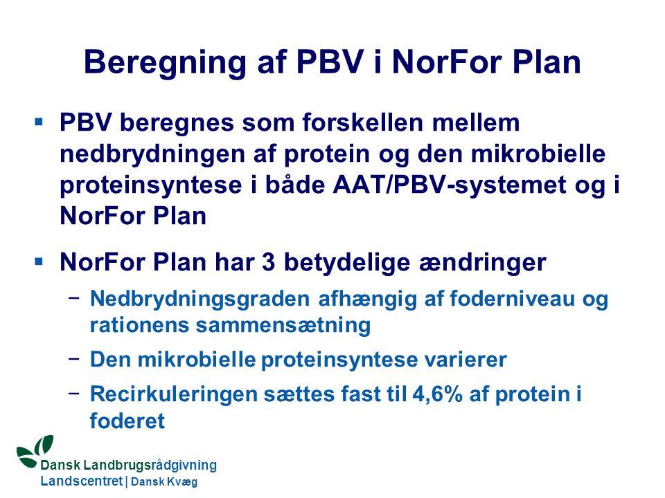 Dansk Landbrugsrådgivning Landscentret | Dansk Kvæg S:\SUNDFODE\OEA\Fodringsdag 2004\Ole Aaes.ppt Beregning af PBV i NorFor Plan  PBV beregnes som forskellen mellem nedbrydningen af protein og den mikrobielle proteinsyntese i både AAT/PBV-systemet og i NorFor Plan  NorFor Plan har 3 betydelige ændringer −Nedbrydningsgraden afhængig af foderniveau og rationens sammensætning −Den mikrobielle proteinsyntese varierer −Recirkuleringen sættes fast til 4,6% af protein i foderet