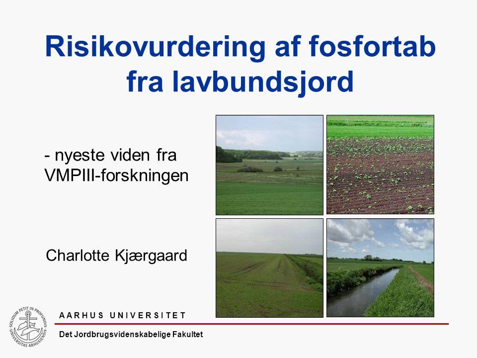 A A R H U S U N I V E R S I T E T Det Jordbrugsvidenskabelige Fakultet Risikovurdering af fosfortab fra lavbundsjord Charlotte Kjærgaard - nyeste viden fra VMPIII-forskningen