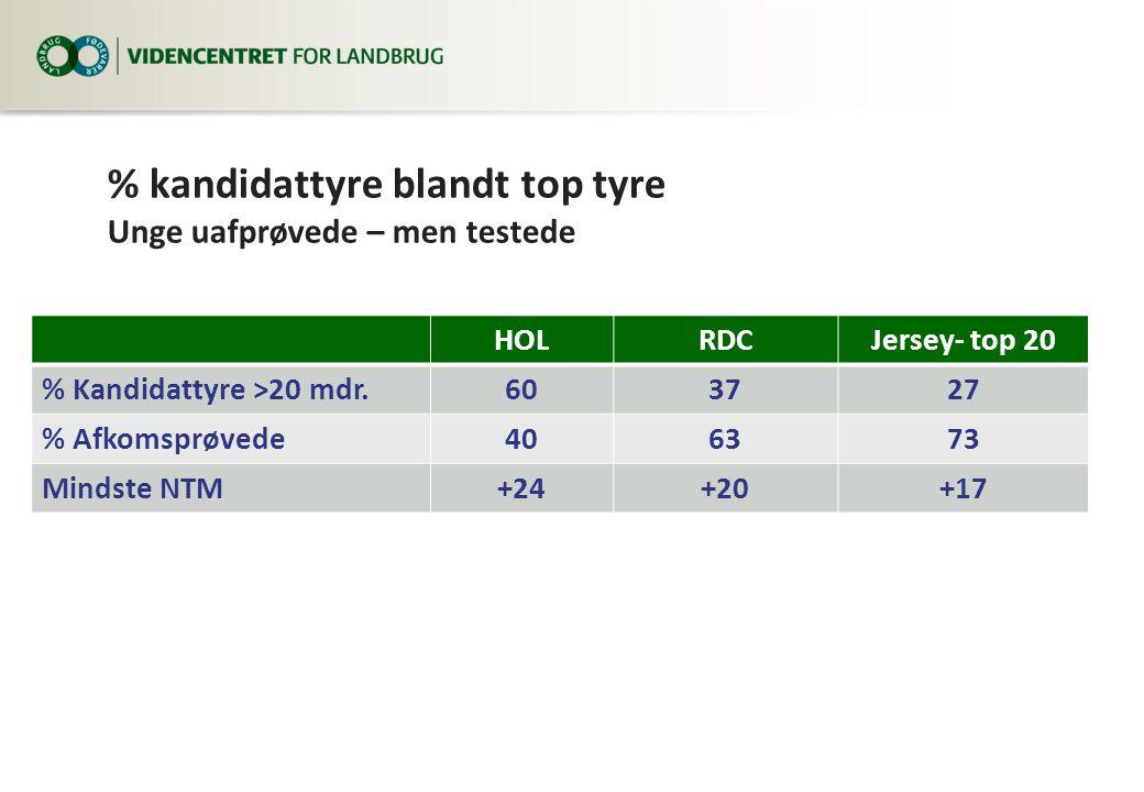 % kandidattyre blandt top tyre Unge uafprøvede – men testede HOLRDCJersey- top 20 % Kandidattyre >20 mdr.603727 % Afkomsprøvede406373 Mindste NTM+24+20+17