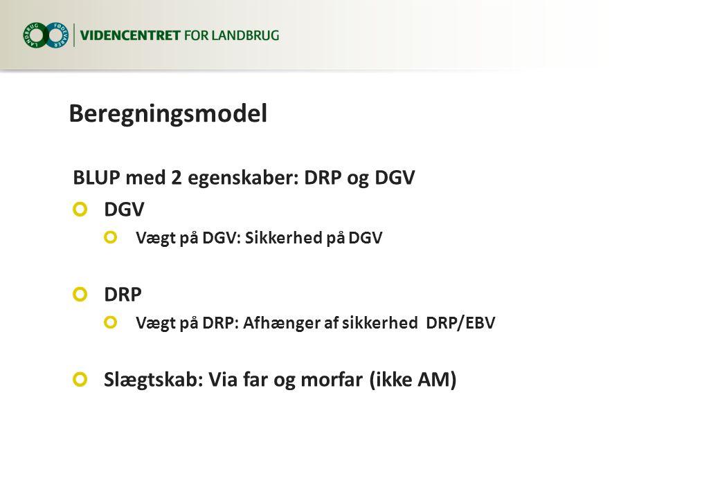Beregningsmodel BLUP med 2 egenskaber: DRP og DGV DGV Vægt på DGV: Sikkerhed på DGV DRP Vægt på DRP: Afhænger af sikkerhed DRP/EBV Slægtskab: Via far og morfar (ikke AM)