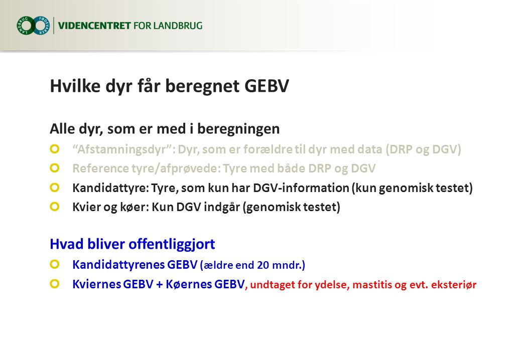 Hvilke dyr får beregnet GEBV Alle dyr, som er med i beregningen Afstamningsdyr : Dyr, som er forældre til dyr med data (DRP og DGV) Reference tyre/afprøvede: Tyre med både DRP og DGV Kandidattyre: Tyre, som kun har DGV-information (kun genomisk testet) Kvier og køer: Kun DGV indgår (genomisk testet) Hvad bliver offentliggjort Kandidattyrenes GEBV (ældre end 20 mndr.) Kviernes GEBV + Køernes GEBV, undtaget for ydelse, mastitis og evt.