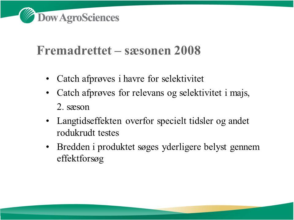Fremadrettet – sæsonen 2008 Catch afprøves i havre for selektivitet Catch afprøves for relevans og selektivitet i majs, 2.