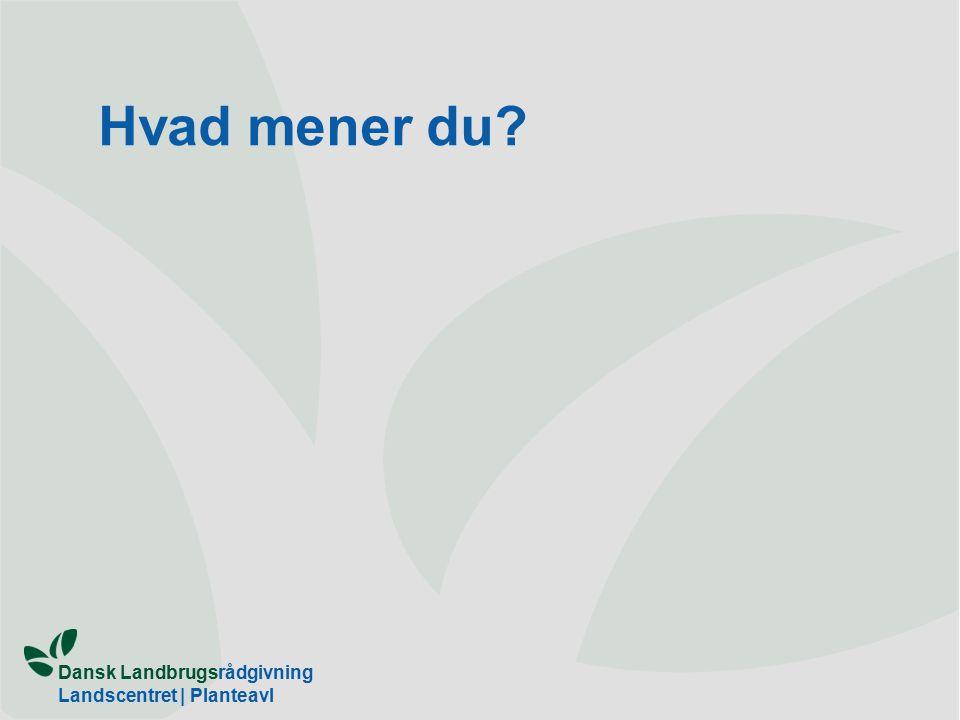 Dansk Landbrugsrådgivning Landscentret | Planteavl Hvad mener du