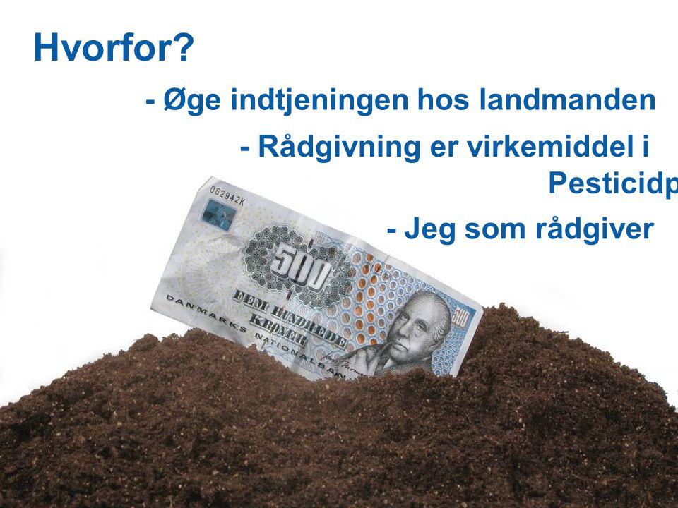 Dansk Landbrugsrådgivning Landscentret | Planteavl - Øge indtjeningen hos landmanden Hvorfor.