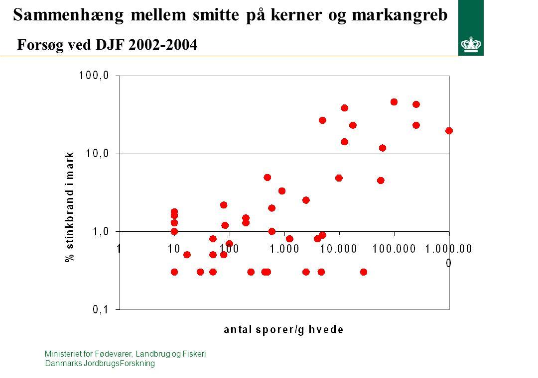 Ministeriet for Fødevarer, Landbrug og Fiskeri Danmarks JordbrugsForskning Sammenhæng mellem smitte på kerner og markangreb Forsøg ved DJF 2002-2004
