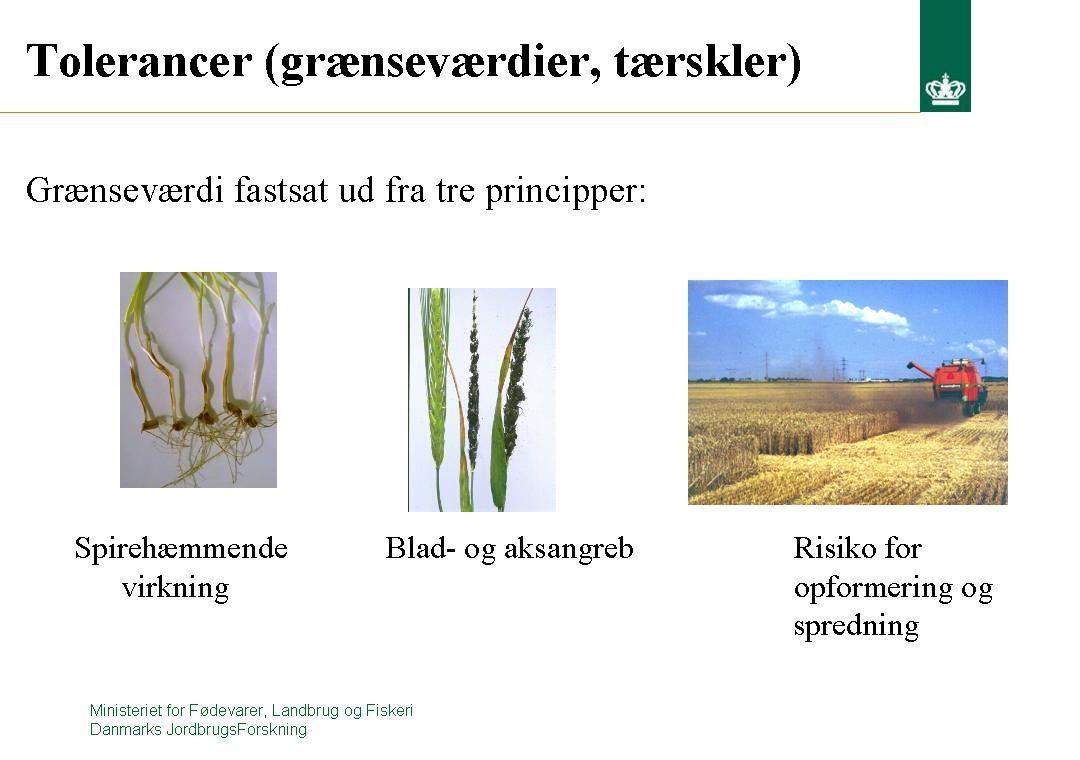 Ministeriet for Fødevarer, Landbrug og Fiskeri Danmarks JordbrugsForskning