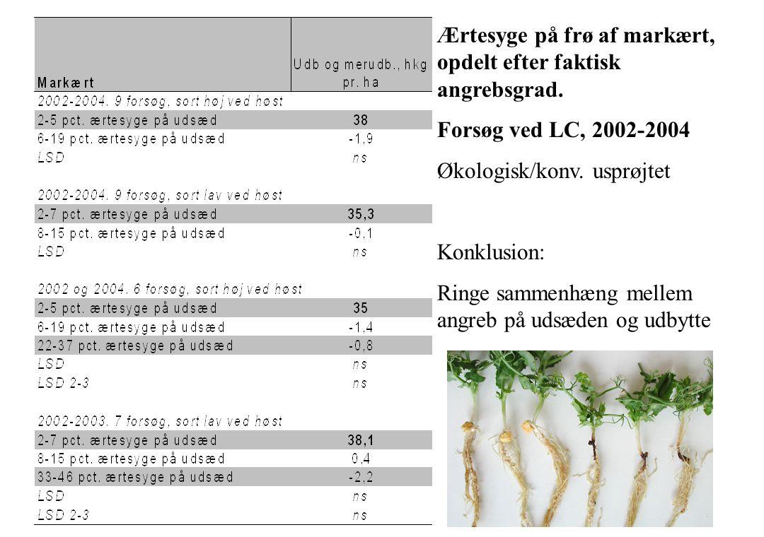 Ærtesyge på frø af markært, opdelt efter faktisk angrebsgrad.