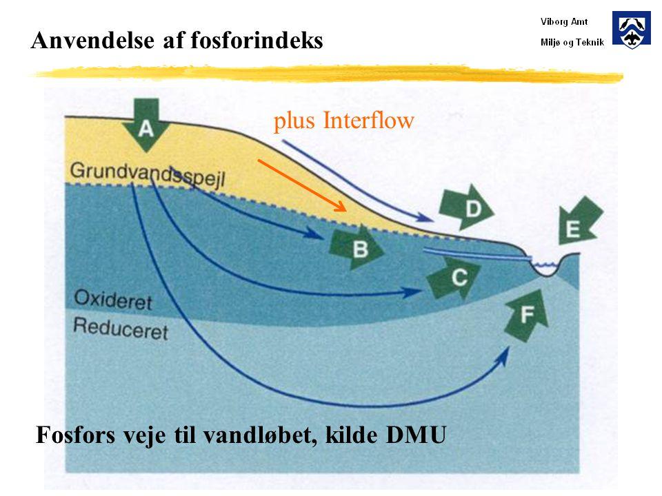 Anvendelse af fosforindeks plus Interflow Fosfors veje til vandløbet, kilde DMU