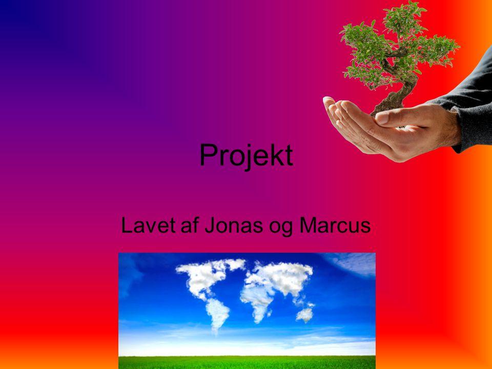 Projekt Lavet af Jonas og Marcus