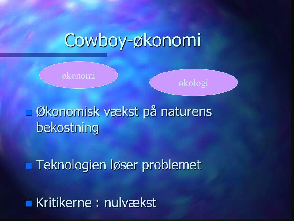 Cowboy-økonomi n Økonomisk vækst på naturens bekostning n Teknologien løser problemet n Kritikerne : nulvækst økonomi økologi