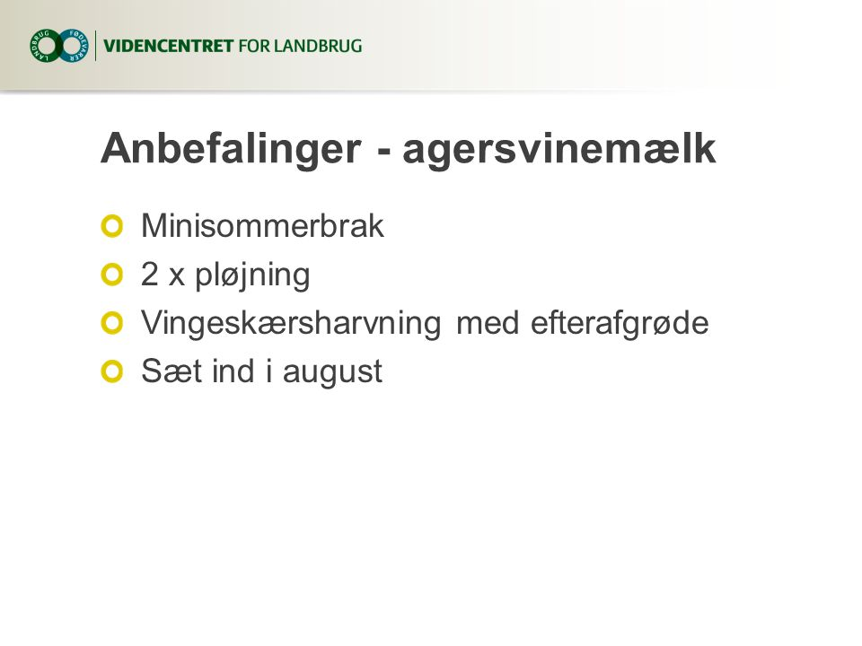 Anbefalinger - agersvinemælk Minisommerbrak 2 x pløjning Vingeskærsharvning med efterafgrøde Sæt ind i august