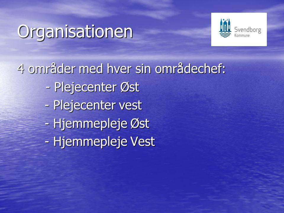Organisationen 4 områder med hver sin områdechef: - Plejecenter Øst - Plejecenter vest - Plejecenter vest - Hjemmepleje Øst - Hjemmepleje Øst - Hjemmepleje Vest - Hjemmepleje Vest
