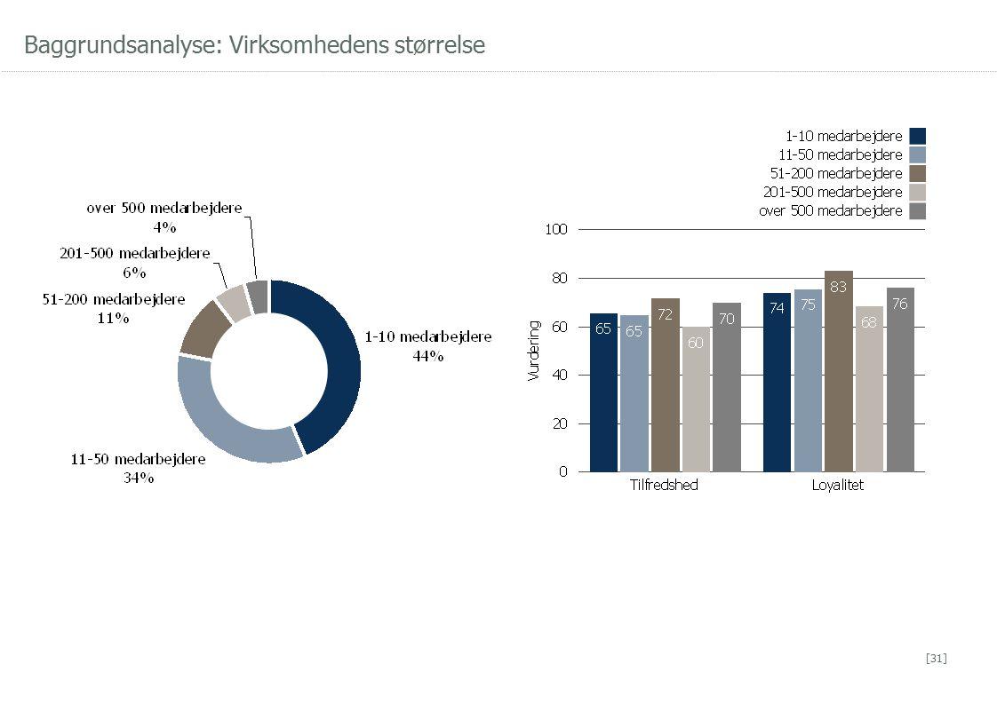 Baggrundsanalyse: Virksomhedens størrelse [31]