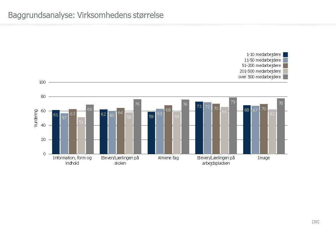 Baggrundsanalyse: Virksomhedens størrelse [32]