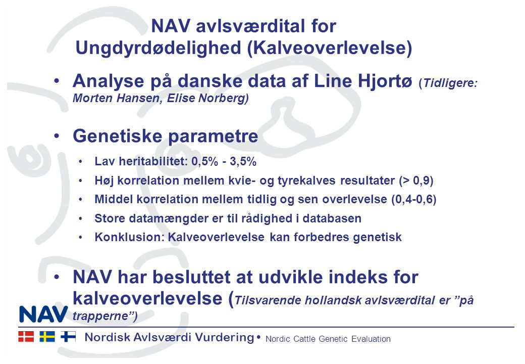 Nordisk Avlsværdi Vurdering Nordic Cattle Genetic Evaluation NAV avlsværdital for Ungdyrdødelighed (Kalveoverlevelse) Analyse på danske data af Line Hjortø (Tidligere: Morten Hansen, Elise Norberg) Genetiske parametre Lav heritabilitet: 0,5% - 3,5% Høj korrelation mellem kvie- og tyrekalves resultater (> 0,9) Middel korrelation mellem tidlig og sen overlevelse (0,4-0,6) Store datamængder er til rådighed i databasen Konklusion: Kalveoverlevelse kan forbedres genetisk NAV har besluttet at udvikle indeks for kalveoverlevelse ( Tilsvarende hollandsk avlsværdital er på trapperne )