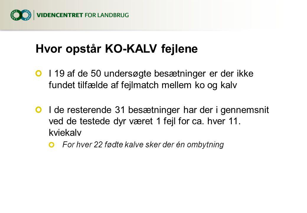 Hvor opstår KO-KALV fejlene I 19 af de 50 undersøgte besætninger er der ikke fundet tilfælde af fejlmatch mellem ko og kalv I de resterende 31 besætninger har der i gennemsnit ved de testede dyr været 1 fejl for ca.