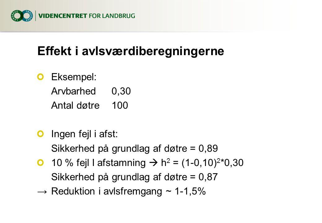 Effekt i avlsværdiberegningerne Eksempel: Arvbarhed0,30 Antal døtre100 Ingen fejl i afst: Sikkerhed på grundlag af døtre = 0,89 10 % fejl I afstamning  h 2 = (1-0,10) 2 *0,30 Sikkerhed på grundlag af døtre = 0,87 →Reduktion i avlsfremgang ~ 1-1,5%