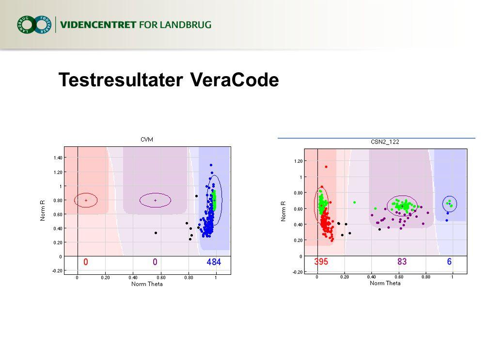 Testresultater VeraCode