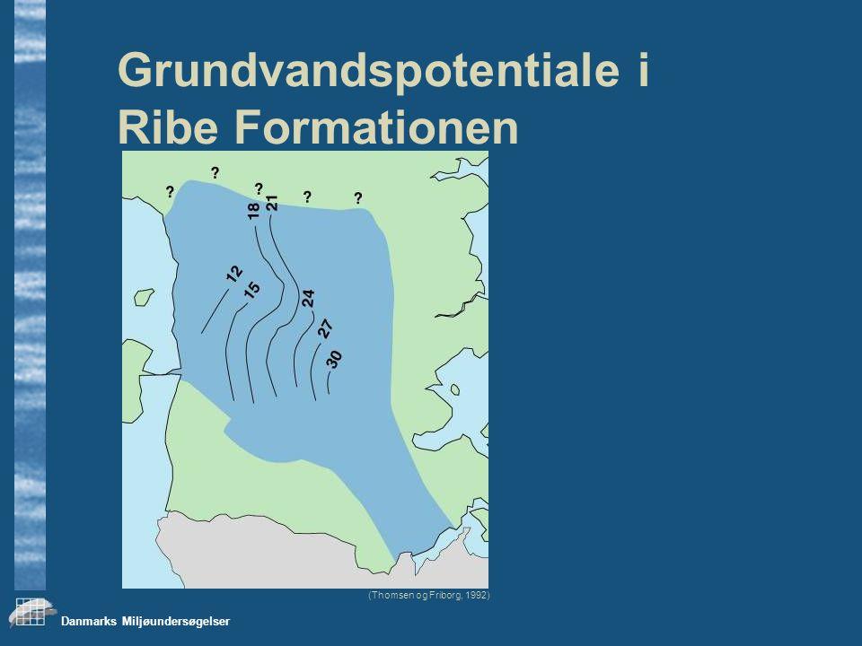 Danmarks Miljøundersøgelser Grundvandspotentiale i Ribe Formationen (Thomsen og Friborg, 1992)