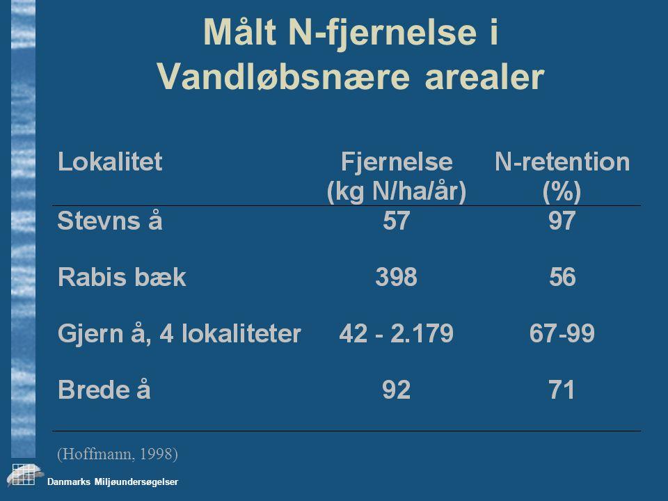 Danmarks Miljøundersøgelser Målt N-fjernelse i Vandløbsnære arealer (Hoffmann, 1998)