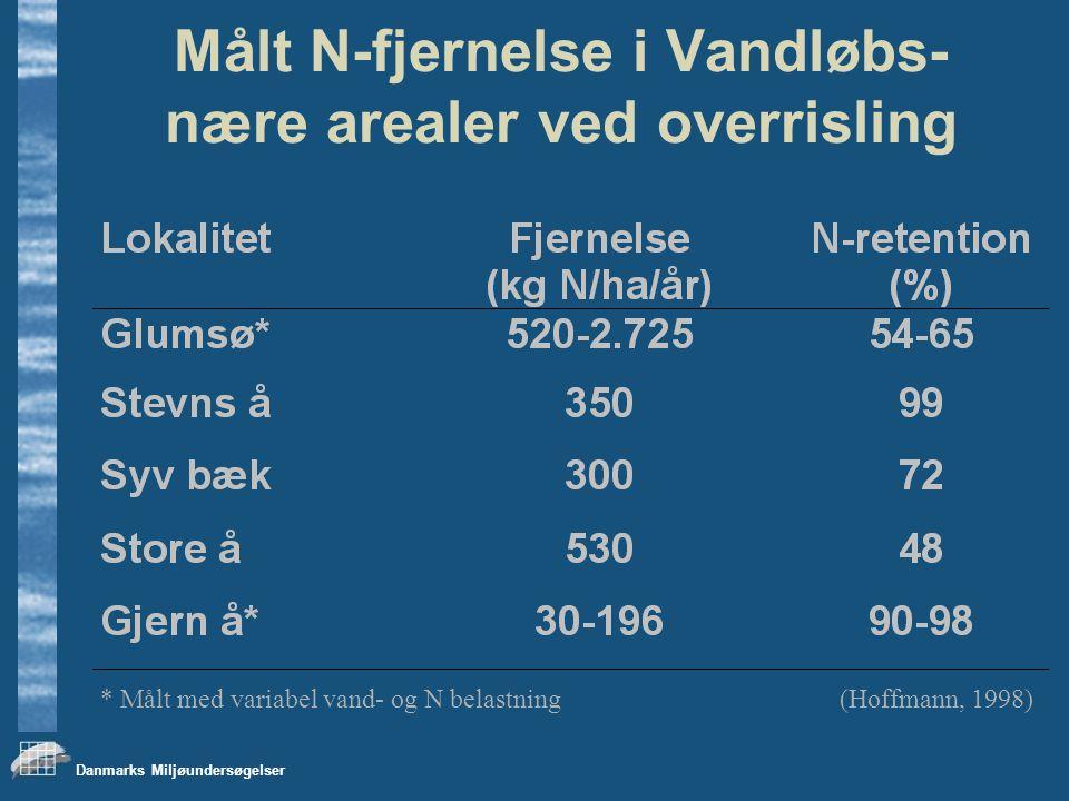 Danmarks Miljøundersøgelser Målt N-fjernelse i Vandløbs- nære arealer ved overrisling (Hoffmann, 1998)* Målt med variabel vand- og N belastning