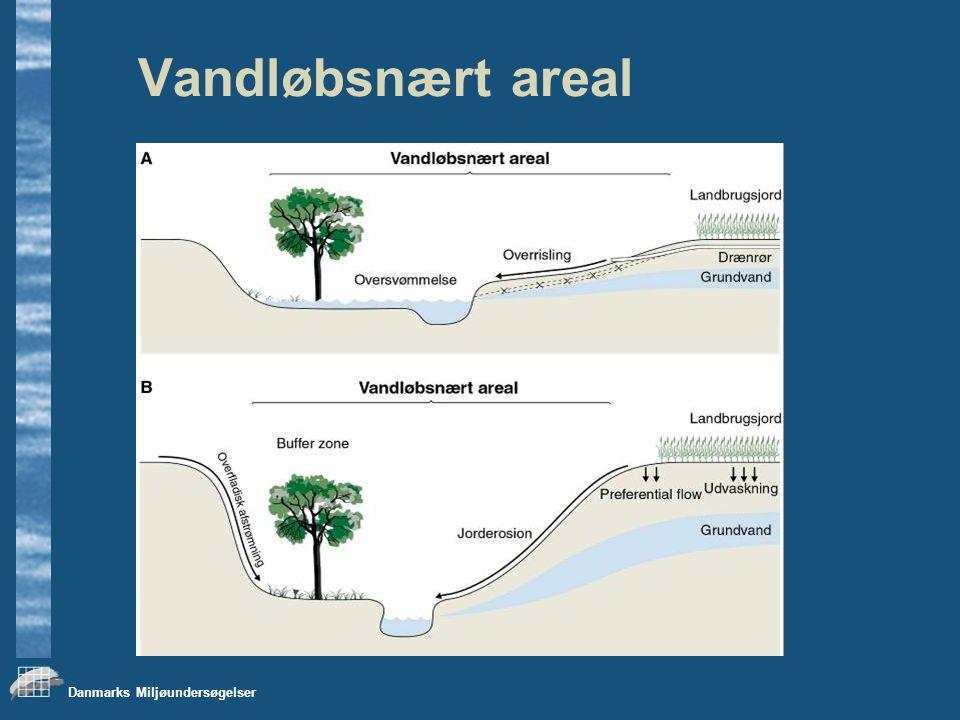 Danmarks Miljøundersøgelser Vandløbsnært areal