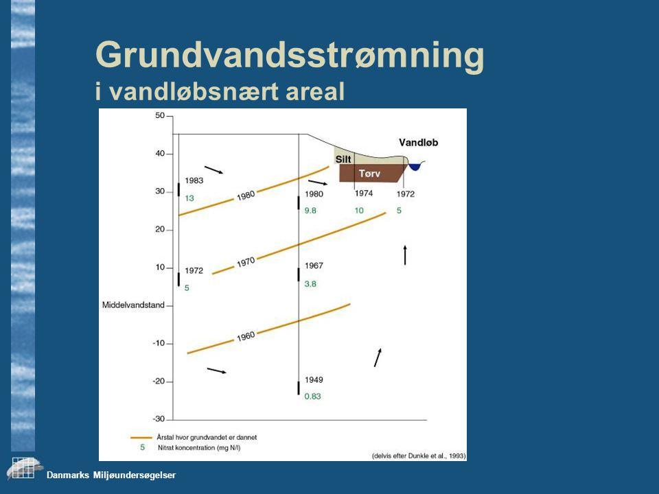 Danmarks Miljøundersøgelser Grundvandsstrømning i vandløbsnært areal